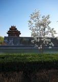 башня строба фарфора Пекин запрещенная городом Стоковые Фотографии RF