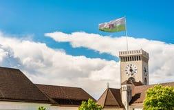 Башня с часами замка с флагом Стоковая Фотография