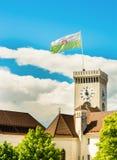 Башня с часами замка с флагом Стоковое Изображение RF