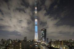Башня токио дерева неба на ноче Стоковая Фотография
