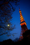 Башня токио на twilight голубом небе стоковое фото rf