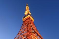 башня токио японии Стоковое Изображение