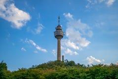 Башня Тэгу, ориентир ориентир или символ города Тэгу стоковое изображение rf