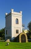 Башня часового Iasi стоковая фотография rf