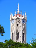 башня часов 2 auckland Стоковое Фото
