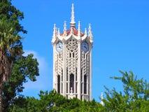 башня часов 2 auckland Стоковые Изображения