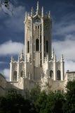 башня часов auckland Стоковые Изображения RF