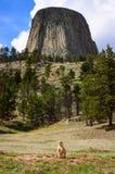 Башня дьяволов стоковая фотография