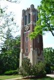 Башня Belmont стоковые изображения