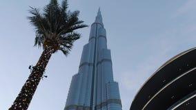 Башня Burj Khalifa в вечере против фона пальмы украшенной с освещением Стабилизированное движение сток-видео
