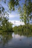 башня cn Стоковые Изображения