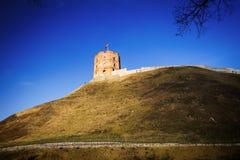 Башня Gediminas Стоковое Изображение RF
