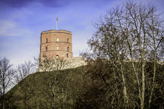Башня Gediminas Стоковые Фото