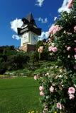 башня graz часов старая Стоковое фото RF