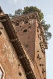 Башня Guinigi в Лукке, Италии, с деревьями на верхней части Стоковое Фото