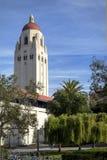 Башня Hoover - Стэнфордский университет Стоковые Фото