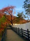 Башня n seoul Стоковые Фотографии RF