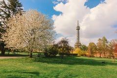Башня Petrin (реплика) Эйфелева башни, Прага стоковая фотография rf