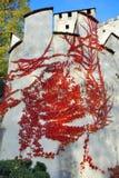 башня schloss lienz bruck вьюнка austr Стоковые Фотографии RF