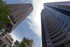 башня seattle здания стеклянная самомоднейшая Стоковые Изображения RF