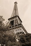 башня sepia eiffel Стоковая Фотография