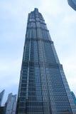 башня shanghai jinmao Стоковое Изображение RF