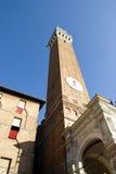 башня siena Стоковое Изображение RF