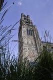 Башня Sint-Salvator Cathedral.dng Стоковые Изображения RF