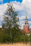 Башня Spasskaya Москвы Кремля и дерева березы Стоковое фото RF