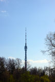 башня tv России ostankino moscow Стоковые Фотографии RF
