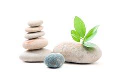 Балансируя изолированные камни Дзэн Стоковое Фото