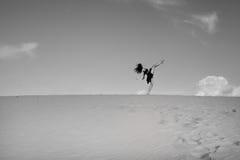 Балерина танцует в пустыне стоковое изображение rf