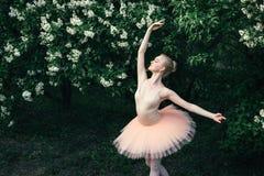 Балерина танцуя outdoors классический балет представляет в землях цветков Стоковые Фотографии RF