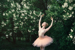 Балерина танцуя outdoors классический балет представляет в землях цветков Стоковые Фото