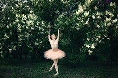 Балерина танцуя outdoors классический балет представляет в землях цветков Стоковая Фотография