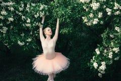 Балерина танцуя outdoors классический балет представляет в землях цветков Стоковое Фото