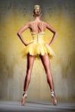Балерина Стоковые Изображения RF