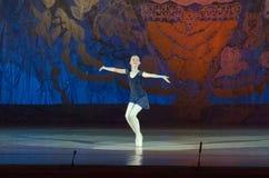 Балет сказа Стоковые Изображения