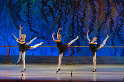 Балет сказа Стоковая Фотография