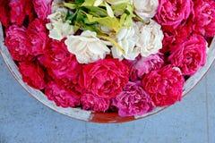 Балийские розы для религиозной церемонии Стоковое фото RF