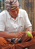 Балийский человек слезая манго стоковые изображения