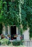 Балкон в зеленых цветах Стоковые Изображения