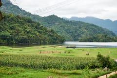 Ба провинция озера, Bac Kan, Вьетнам - Mai 06, 2019: Футбол детей играя на ба озеро Оглушать пейзаж ба стоковые изображения