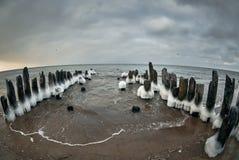 Балтийское море в зиме стоковые фотографии rf