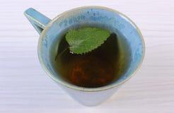 Бальзам лимона в чашке травяного питья на белом деревянном столе стоковое фото