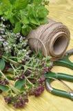Бальзам лимона трав TFresh, тимиан, мята на деревянной доске и аксессуары Стоковая Фотография RF
