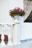 Балюстрада и керамическая ваза Стоковые Изображения RF