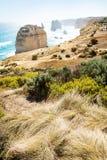 Бдительность на 12 Apostels на большой дороге океана, Виктория, Австралия Стоковое фото RF