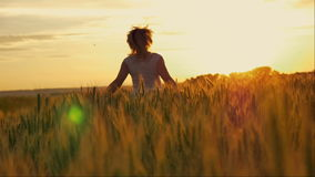 Бега девушки на пшеничном поле на заходе солнца сток-видео