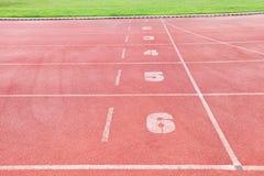 Беговая дорожка в Спорт-арене с травой Стоковое Изображение